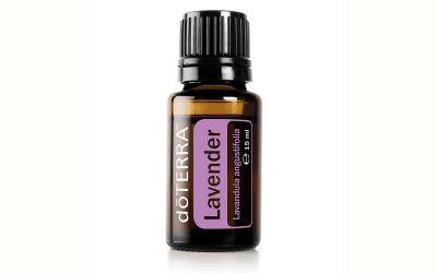Lavender: Power von 100% Lavendel-Blüten
