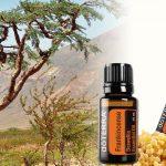 Weihrauch - die natürliche Wunderwaffe für Vitalität