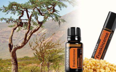 Weihrauch – die natürliche Wunderwaffe für Vitalität